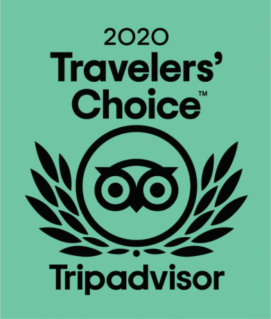 Logo-2020-Traveler-Choice-Tripadvisor