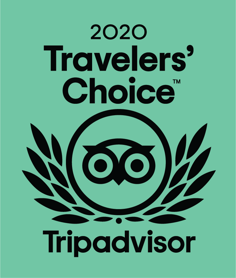 Logo-2020-Traveler-Choice Tripadvisor